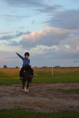 Uniejów nauka jazdy konnej